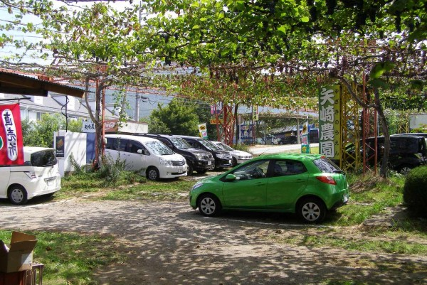 矢崎農園 駐車場